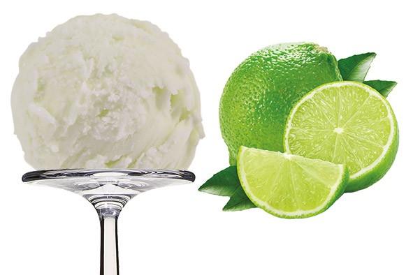 Sorbet Citron vert - grüne Zitrone 2,5 Liter