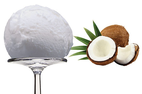 Sorbet Coco - Kokosnuss 2,5 Liter