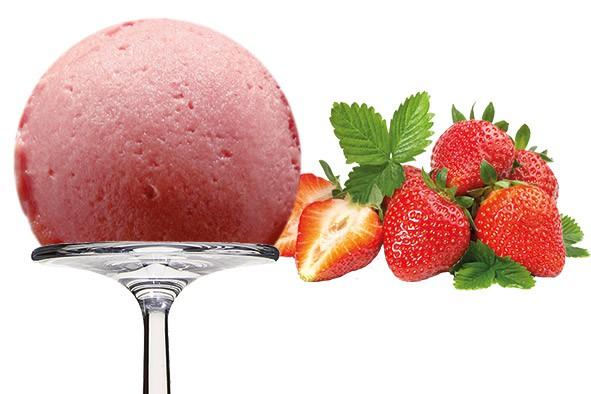 Sorbet Fraise - Erdbeere 2,5 Liter