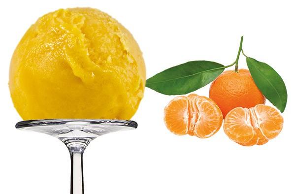 Sorbet Mandarin - Mandarine 2,5 Liter