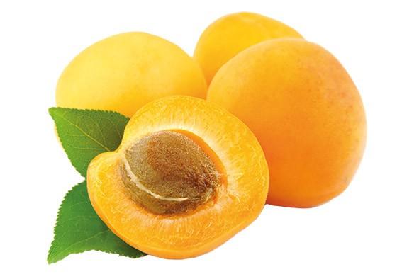 TK Aprikosenhälften (VE = 10 kg)